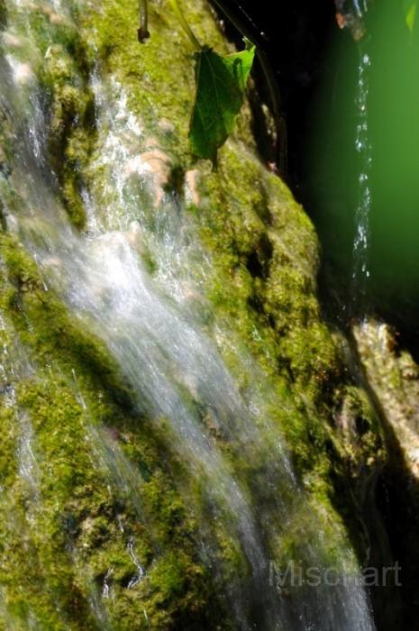 Sacred-water