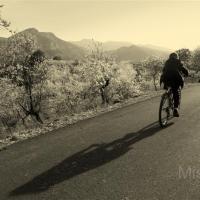fotografia-paisajes-naturaleza-bici