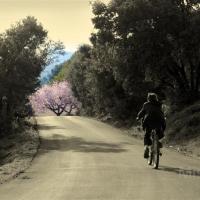 fotografia-paisajes-naturaleza-bicicleta