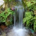fotografia-naturaleza-agua