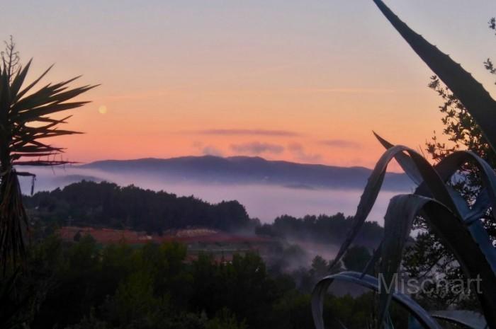 Full-moon-morning-mist