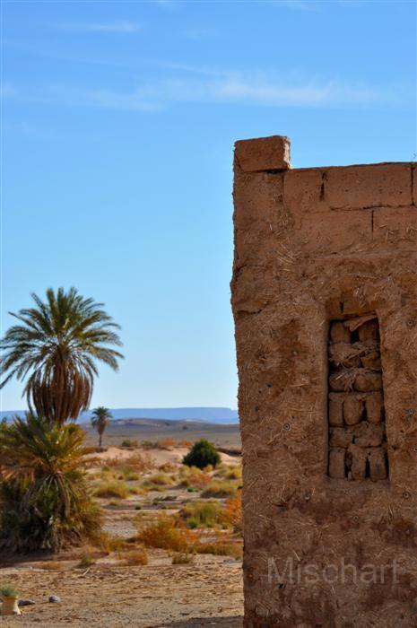 fotografia-marruecos-oasis