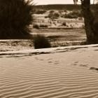 fotografia-marruecos-dunes
