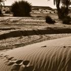 fotografia-marruecos-huellas