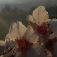 fotografia-paisajes-naturaleza2