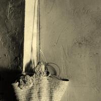 fotografia-naturaleza-cesta