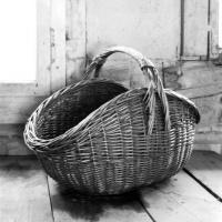 mischart-photography-basket