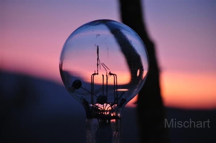 mischart-photography-bulb