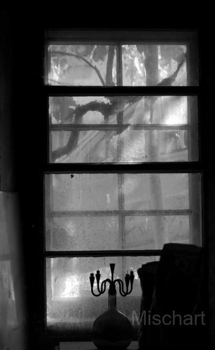 mischart-photography-window