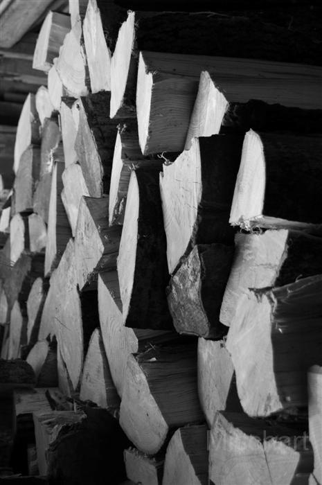 mischart-photography-woodlogs