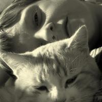 portrait-photography-cat2
