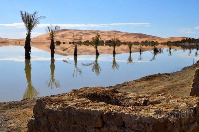Desert-lake