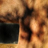 mischart-photography-wall-shadows