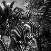 stripy-sculptures