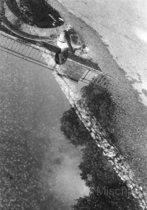 photography-puddle