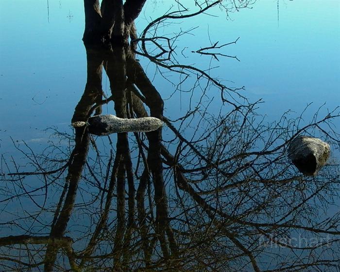 photography-reflection-lake