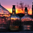 mischart-photography-bottles