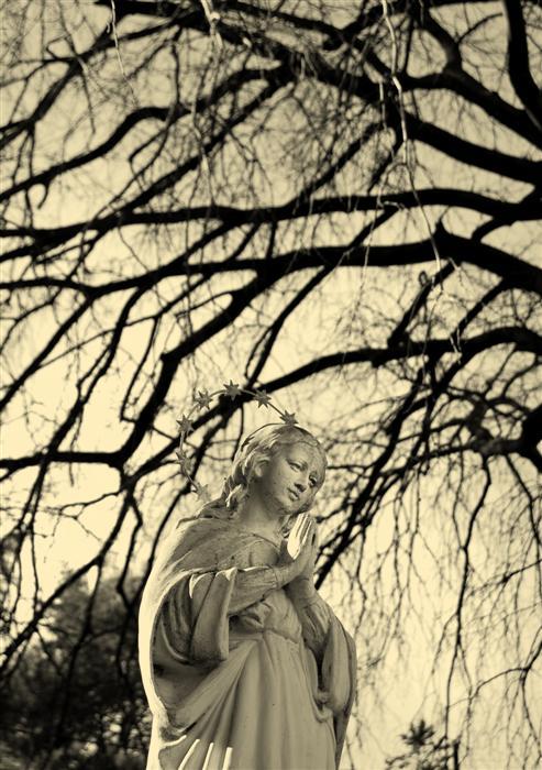 photography-fontilles