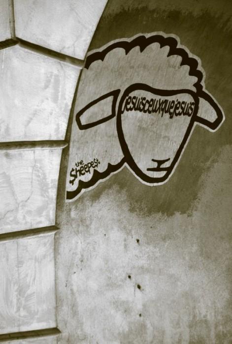 Sheep-art