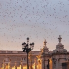 photography-architecture-palacio