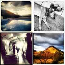 instagram mischart